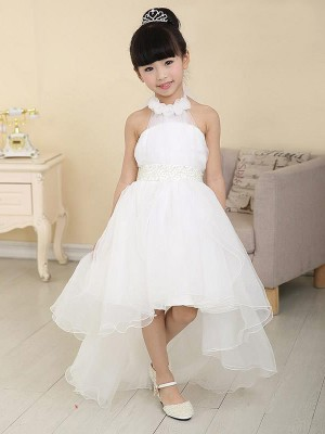 Sweep/Brush Train A-Line/Princess High Neck Sleeveless Beading Organza Flower Girl Dresses