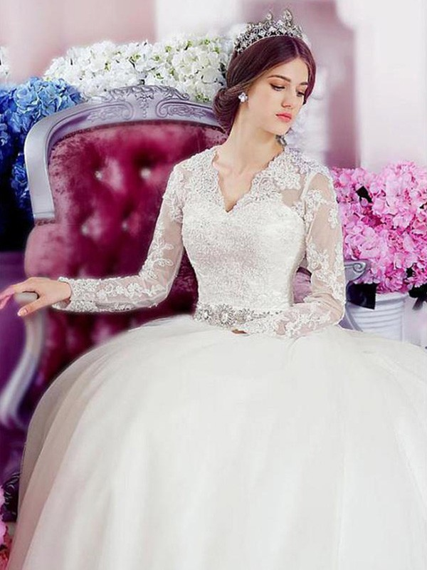Cathedral Train A-Line/Princess Long Sleeves V-neck Tulle Wedding Dresses