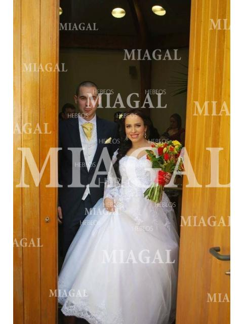 6652b042bd68 Sweep/Brush Train Ball Gown V-neck Long Sleeves Lace Tulle Wedding ...